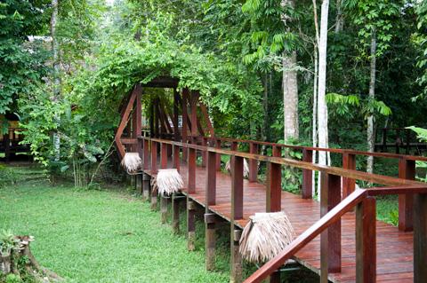 puerto-maldonado-lodge-walkway