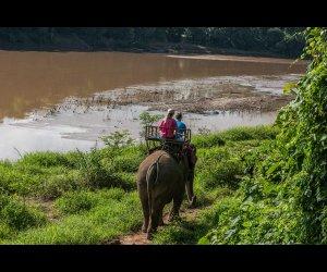 Elephant Ride in Luang Prabang