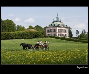 Carriage and Pink Castle