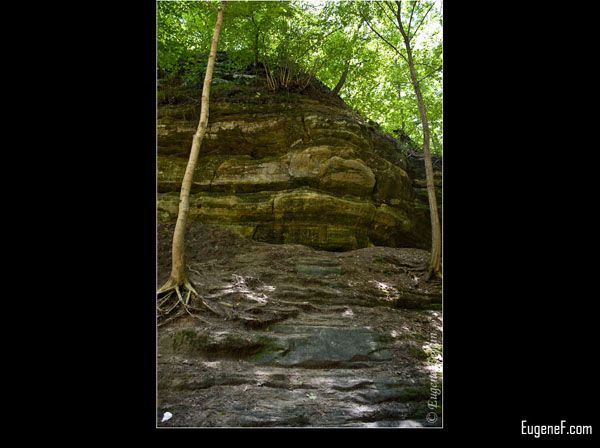 Green Cliff Face