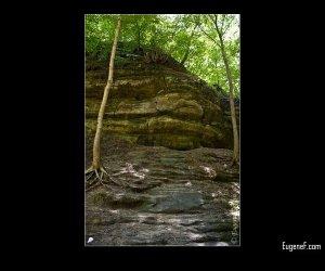 Green Cliff Face