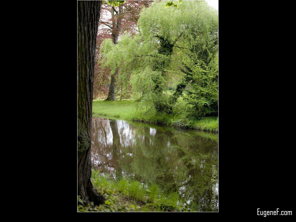 Green River Stream