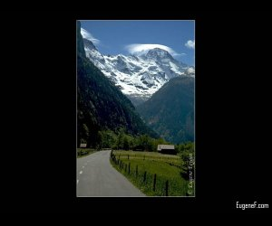 Road to Swiss Alps