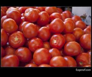 Bright Tomatoes