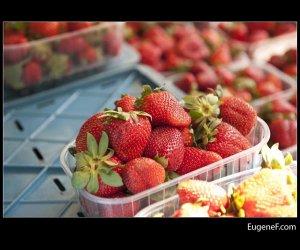 Freshly Boxed Strawberries