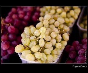 Green Grapes Trio