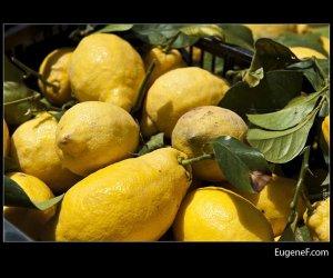 Large Lemon