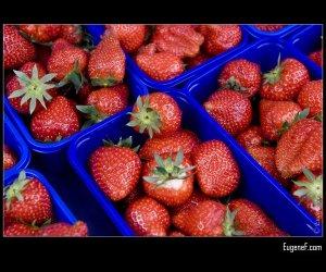 Strawberries In Carton