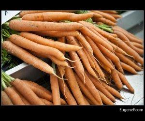 Carrot Stalks