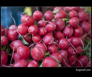 Unclean Radishes