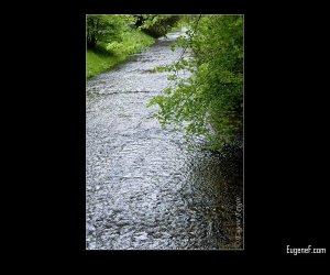 Clean Water Stream
