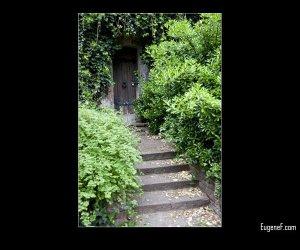 Hidden Door in Badem Badem