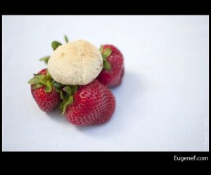 fresh strawberries cookie