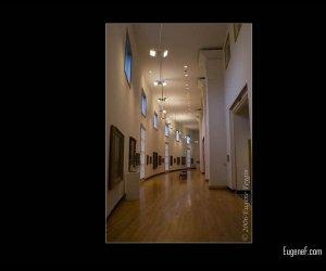 Champaign Museum
