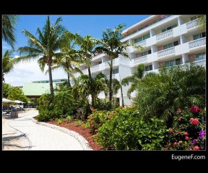 Beautiful Beach Walkway