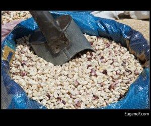 peruvian dry corn