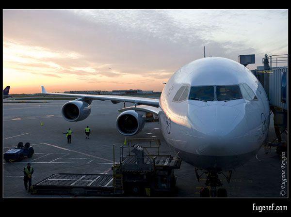 International Flight
