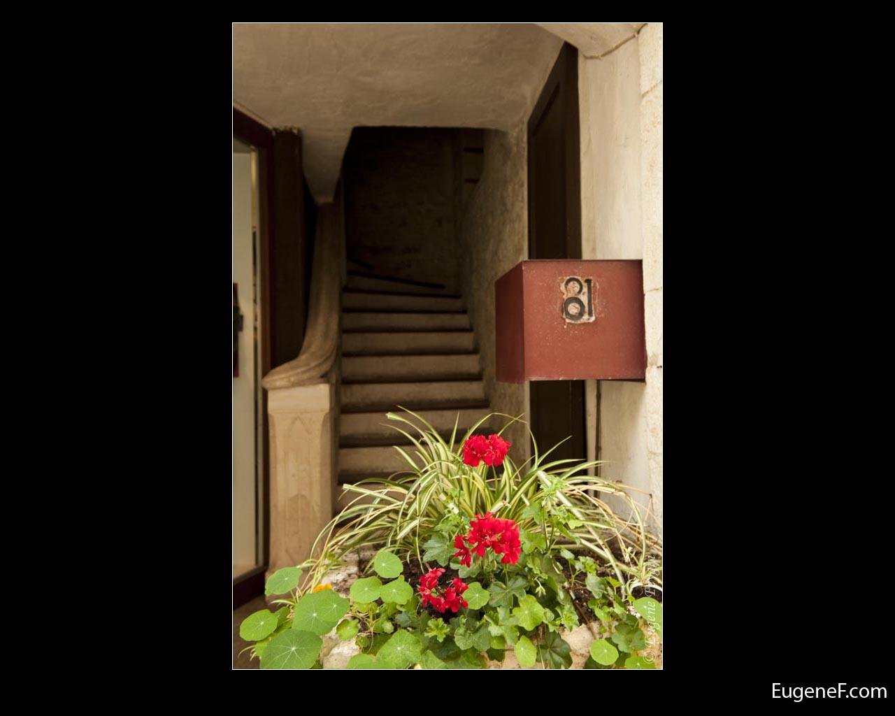 Flower Stairway