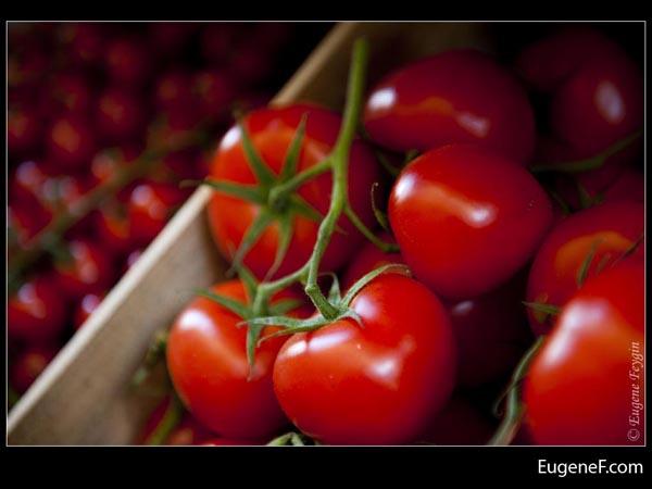Big Tomatoes