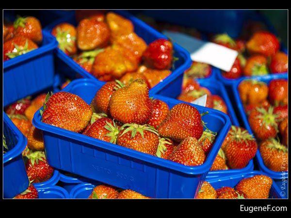 Blue Basket Strawberries