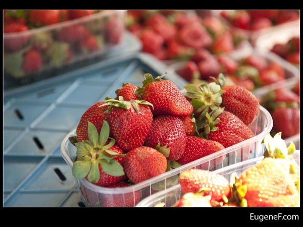 Freshly Boxed Strawberries