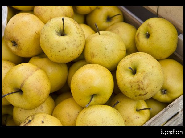 Organic Yellow Apples