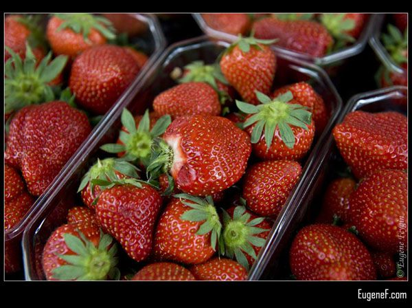 Picked Strawberries