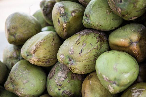 Pile of Green Coconuts