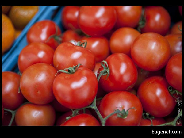 Ripe Tomatoes Reflection
