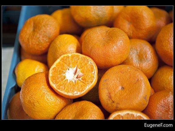 Slice Orange Bunch