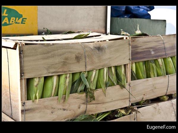 Boxed Corn