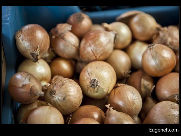Brown Onions