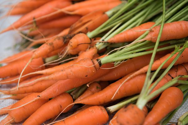 Carrots in Veg Market