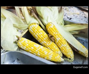 Corn Trio