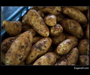 Dirty Potato