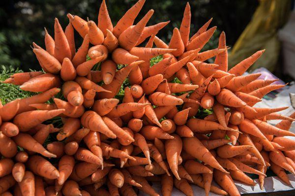 Fresh Carrots in Market