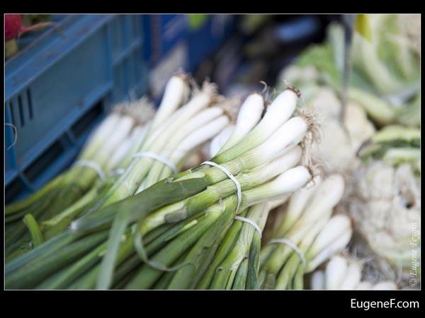 Green Onions Stalk