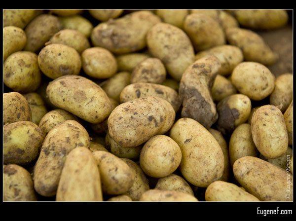 Market Potatoes