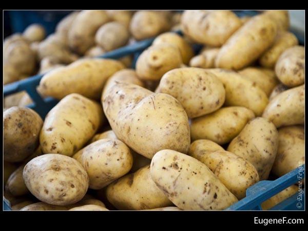 Outside Potatoes
