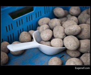 Potato Scooper