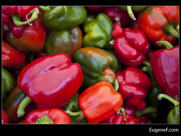 Red Green Pepper