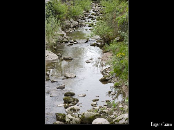 River Stream