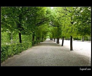 Austrian Garden