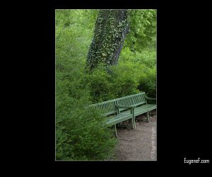 Camouflage Bench