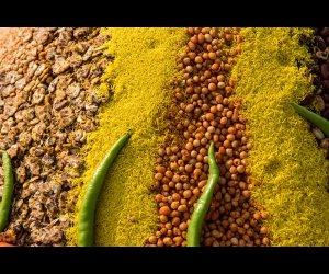 Fried Foods in Jaipur