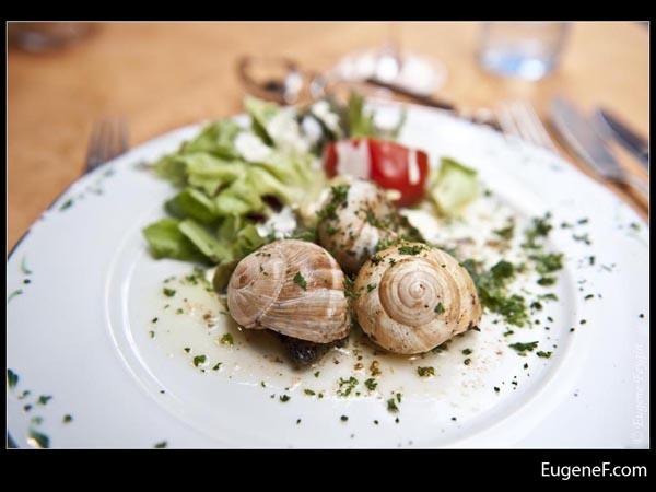 Snail Cuisine