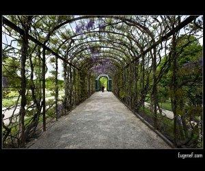 Palace Path