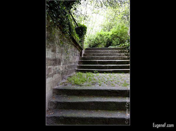 Quiet Brick Pathway