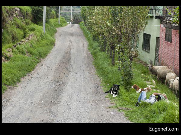Arequipa Landscape 03
