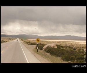 Arequipa Road 40